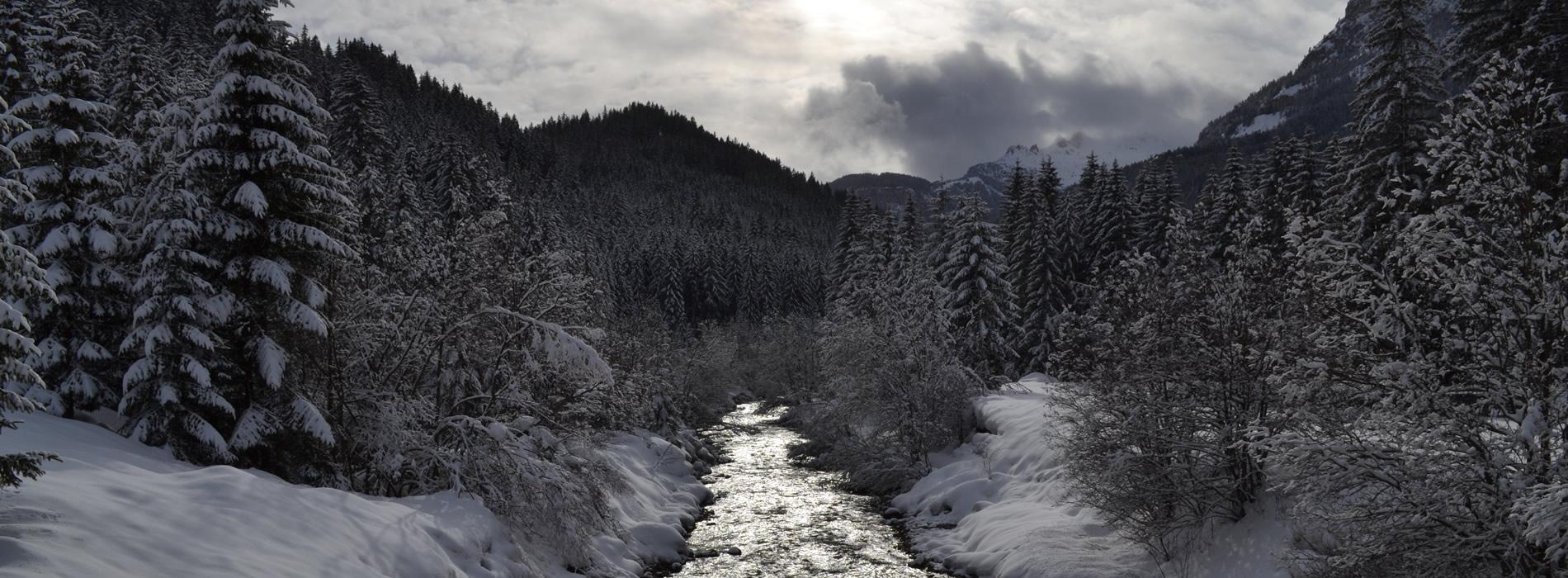 Soggiorno Dolomiti | Campestrin – Val di Fassa – Trentino ...