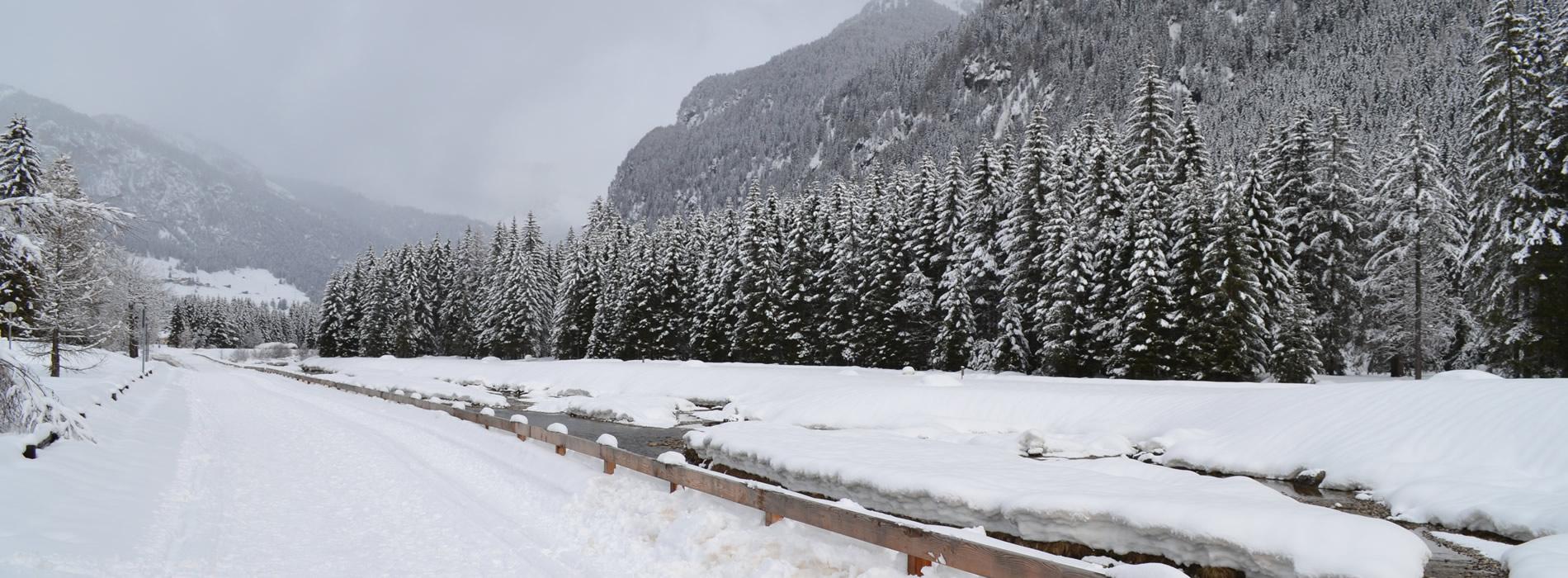 Soggiorno Dolomiti | Campestrin - Val di Fassa - Trentino ...